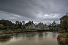 德斯蒙德城堡阿德尔 免版税图库摄影