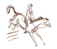 德比、马术运动马和车手 免版税库存图片