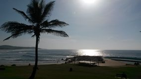 德班海滩南非 免版税库存照片