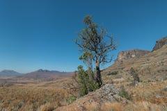 德肯斯伯格山脉 库存照片