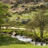 德贝郡地区英国国家公园峰顶 免版税库存图片