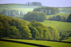 德贝郡地区英国国家公园峰顶 库存照片