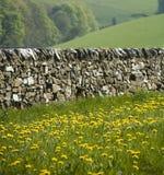 德贝郡地区英国峰顶 库存照片