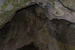 德里亚诺沃,保加利亚- 10 28 2017年:Bacho Kiro洞 库存照片