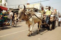 德里印度老场面业务量 免版税库存照片
