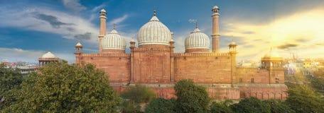 德里印度jama老masjid清真寺 库存图片