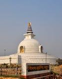 德里印度shanti stupa 免版税库存图片