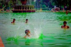 德里,印度- 2017年9月16日:未认出印地安smming在绿色水中在一个池塘在德里,印度 库存图片