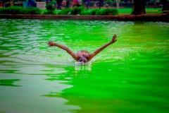 德里,印度- 2017年9月16日:未认出的印地安男孩游泳和使用在水,绿色水中在池塘  图库摄影