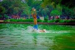 德里,印度- 2017年9月16日:未认出的愉快的印地安男孩跑在池塘的,绿色水在德里 免版税库存照片