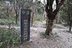 德阳,四川中国, stonecutting古老石片剂的大收藏量将军 免版税库存照片