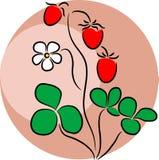 徽标草莓 库存例证