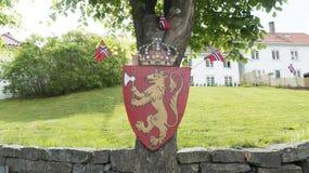 徽章挪威的 库存图片