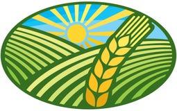 徽章符号麦子 库存例证