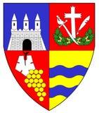 徽章阿拉德,罗马尼亚 向量例证