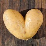 心形的土豆 免版税库存照片