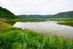 心形的天堂湖 库存图片