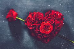 心形的玫瑰和玫瑰色花 图库摄影
