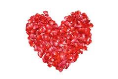 心形的红色玫瑰 免版税图库摄影