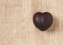 心形的紫色李子 免版税库存照片