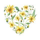 心形水彩的花圈 黄色雏菊 免版税库存图片