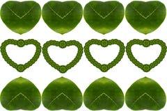 心脏创造性的花叶  免版税库存图片