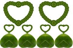 心脏创造性的花叶  库存图片