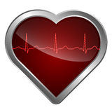 心脏和心电图 图库摄影