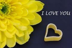 心脏和菊花 库存图片