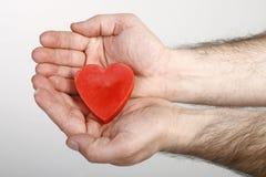 心脏在手中 图库摄影