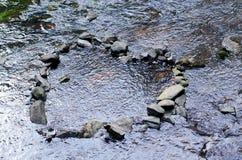 心脏在水中 免版税库存图片