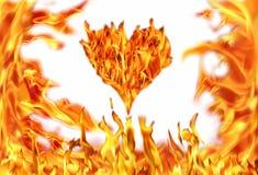 心脏形状和火火焰 库存照片