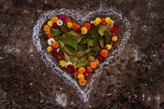 心脏形状在春天花和叶子之前 免版税图库摄影
