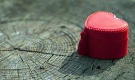 心脏形状在树干的礼物盒 免版税库存照片