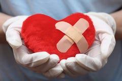 心脏形状在医生的手上 库存图片