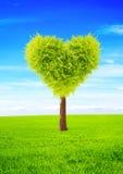 心脏形状树 皇族释放例证