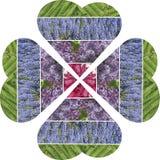 心脏拼贴画折叠了入一朵四生叶的花 填装的博士 库存图片