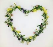 心脏标志由花和叶子制成在白色背景 图库摄影