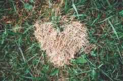 心脏标志由黄色干草和叶子制成在绿草背景 秋天概念,秋季 爱自然,友好的生态 库存照片