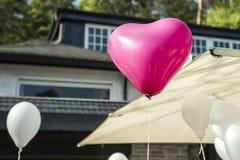 心脏浪漫背景婚礼婚姻白色和桃红色欢乐气球形状  免版税图库摄影