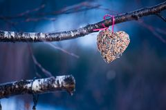 心脏由种子制成 免版税库存图片