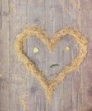 心脏由黄色云杉针做成 免版税库存图片
