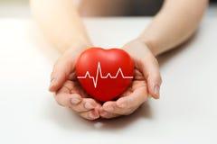 心脏病学或健康保险概念-红色心脏在手上 库存图片