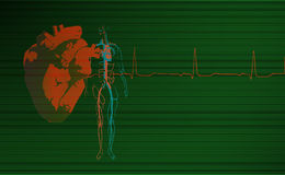 心脏病学背景绿色 库存图片