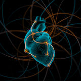 心脏的例证与冲动的 图库摄影