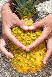 以心脏的形式手指在背景菠萝剥皮 我喜欢果子 库存图片