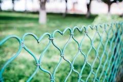 以心脏的形式篱芭 库存照片