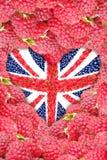 以心脏的形式英国国旗在莓背景  免版税图库摄影