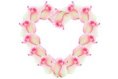 心脏的淡粉红色花 免版税库存照片