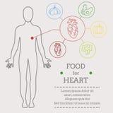 心脏的食物 皇族释放例证